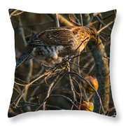Partridge In An Apple Tree Throw Pillow