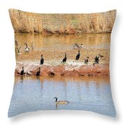 Party Island Throw Pillow