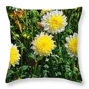 Pasadoble Dahlia Throw Pillow
