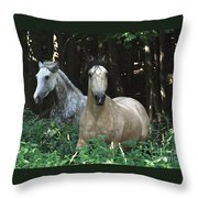 Paso Fino Mares Pay Attention Throw Pillow