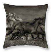 Paso Peruvian Horses On The Run Throw Pillow