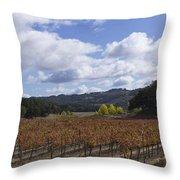 Paso Robles Autumn Throw Pillow