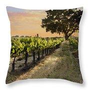 Paso Vineyard  Throw Pillow