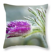 Pasque Flower Throw Pillow