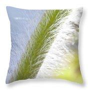 Pasqueflower Stem  Throw Pillow