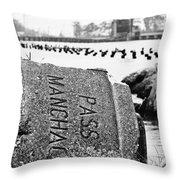 Pass Manchac Throw Pillow by Scott Pellegrin
