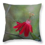 Passiflora Flower Throw Pillow