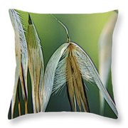 Passing By.... Throw Pillow