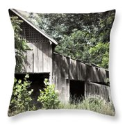 Passing Of Time Throw Pillow