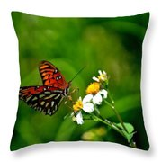 Passion Butterfly Painted Throw Pillow