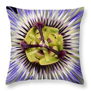 Passion Flower-0008 Throw Pillow