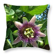 Passion Flower 1 Throw Pillow