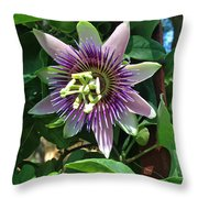 Passion Flower 4 Throw Pillow