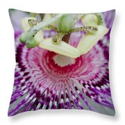 Passion Flower In Bloom Throw Pillow