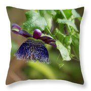 Passion Flower - Ruby Glow Throw Pillow