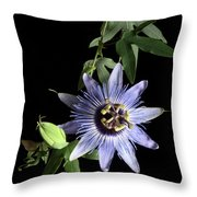 Passion Flower Throw Pillow by Vickie Szumigala