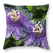 Passion Flowers Throw Pillow