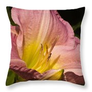 Passion Pink Lilly Throw Pillow
