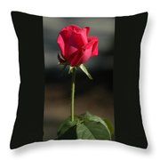 Passionate Lady Throw Pillow