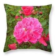 Passionate Pink Springtime Throw Pillow