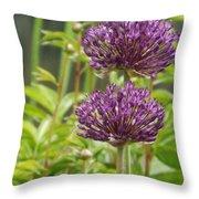 Passionately Purple Throw Pillow