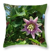Passion Flower 3 Throw Pillow