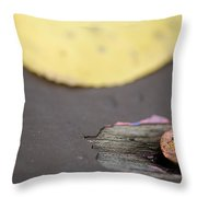 Past Lives Throw Pillow