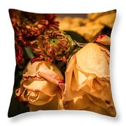 Past Our Prime Throw Pillow