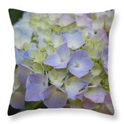 Pastel Blue Hydrangea Throw Pillow