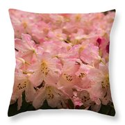Pastel Coral Azaleas Refreshed By The Rains Throw Pillow