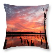 Pastel Morn Throw Pillow
