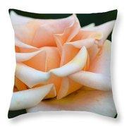 Pastel Peach Rose Throw Pillow