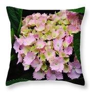 Pastel Pink Hydrangea Throw Pillow