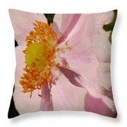 Pastel Pink Mallow Throw Pillow