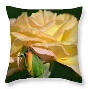 Pastel Rose Ruffles Throw Pillow