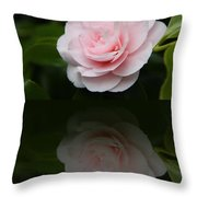 Pastel Satin  Throw Pillow