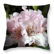 Pastel Springtime Throw Pillow