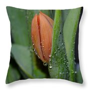 Pastel Tulips Buds Throw Pillow