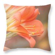 Pastels Throw Pillow by Kim Hojnacki