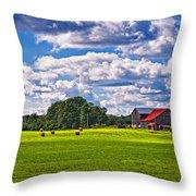 Pastoral Ontario Throw Pillow