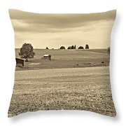 Pastoral Pennsylvania Sepia Throw Pillow