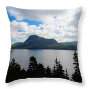 Pastoral Scene By The Ocean Throw Pillow