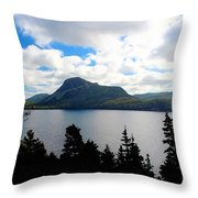 Pastoral Scene By The Ocean Painterly Throw Pillow