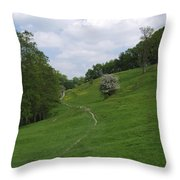 Pasture Land At Ashford-in-the-water Throw Pillow
