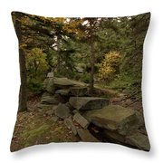 Pastures Past Throw Pillow