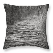 Patagonia 24 Throw Pillow