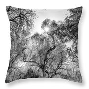 Patagonia Bw 4 Throw Pillow