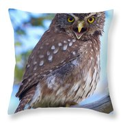Patagonia Pygmy Owl Throw Pillow