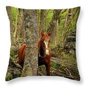 Patagonian Packhorse Throw Pillow