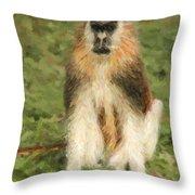 Patas Monkey Erythrocebus Patas  Throw Pillow